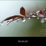 kiss the rain 02