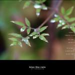 kiss the rain 03