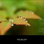 kiss the rain 06