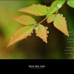 kiss the rain 07