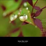 kiss the rain 09