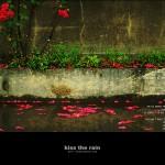 kiss the rain 13