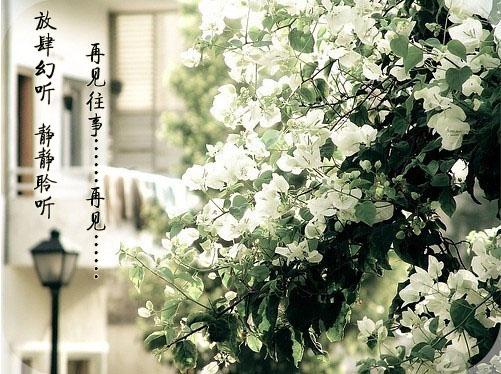 【放肆幻听】Vol.3再见往事,再见 林海的心灵钢琴《爱情风华》DJ:孙潇毅