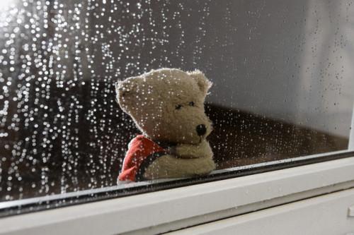 等待一场静谧而盛大的悲伤
