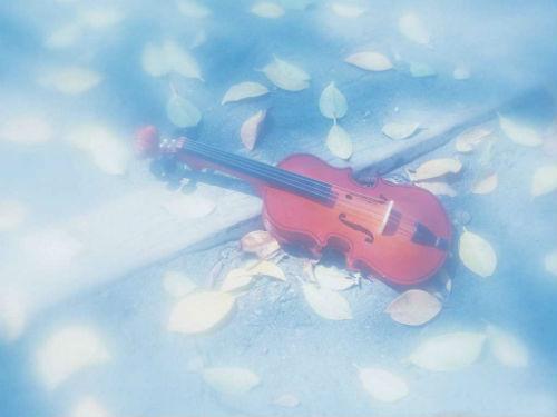 微风细雨 (小提琴+琵琶)艺术家:张毅