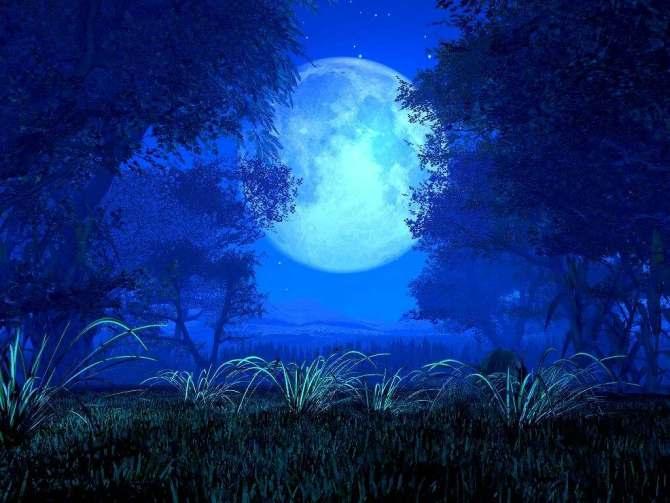 月亮心 Feel the Moon 艺术家:陈敏