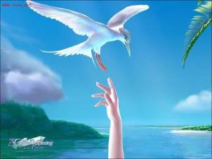 【钢琴曲】如果可以自由飞翔 艺术家:Rubato