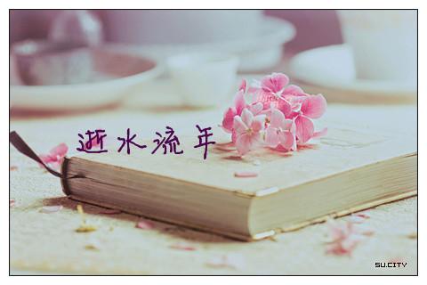 【网络美文】逝水流年,寂寞沧桑了伤 作者:残月