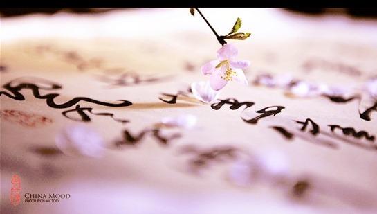 【唯美句子】Vol3.那些惊艳唯美的句子