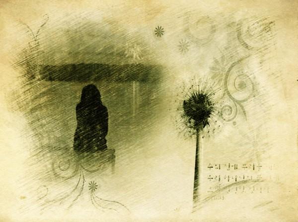 【网络美文】岁月清浅,人生无恙  作者:香雪若兰