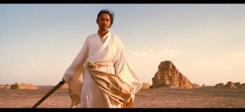 【悲情沙漠—残剑】-清绝寒梅原创