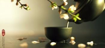 【随笔】茶中有清味 文/燚冰