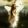 【现代诗歌】天使在等我 文/燚冰