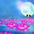 【古风琵琶】中国风纯音《我如星·君如月》