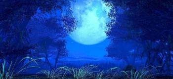 【古风纯音】月夜清风 埙