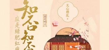 【古风纯音】《知否知否》古筝&竹笛版&钢琴&陶笛