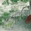 【现代诗】情系小雨 文/冰山雪莲