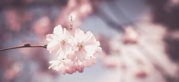 【散文随笔】三月